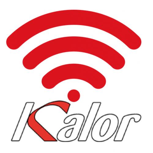 Modulo Wifi per controllo Remoto di Stufe e Termostufe e Caldaie